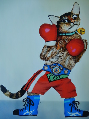 9月「ネコのボクシング〜チャンピオンになったラビ〜」