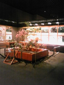 栃木の植物のコーナー