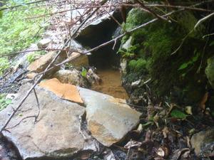 温泉の湧出口