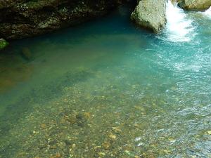 仙人岩つり橋付近の鹿股川