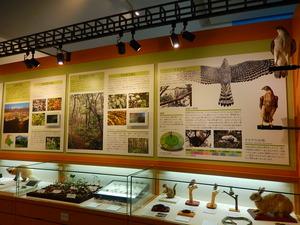 那須野が原博物館常設展