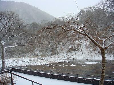 2月17日朝の雪景色