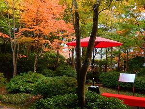 京都のよう