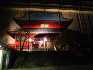 日光輪王寺逍遥園紅葉ライトアップ