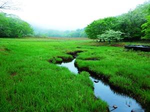 大沼雨の日と晴れの日と