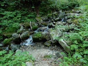 田代山登山道