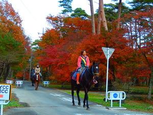 千本松牧場の紅葉