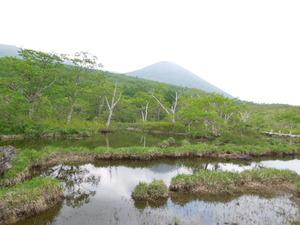 那須方面の山を背景に