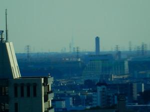 栃木県庁から見えたスカイツリー