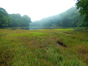 初秋の大沼