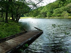 台風10号の後の大沼