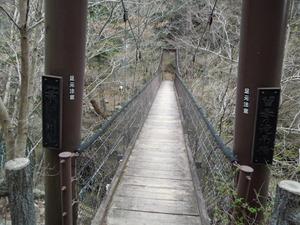 留春のつり橋