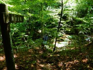 仁三郎の滝へ