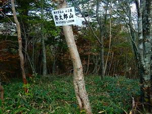 弥太郎山山頂