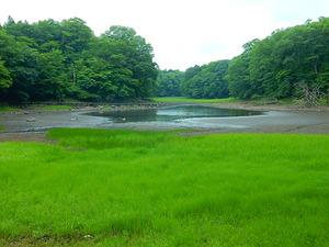 昨日の大沼