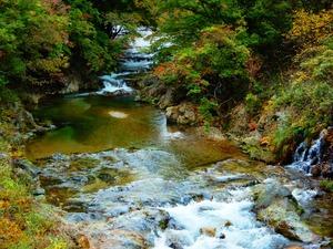 男鹿川の紅葉