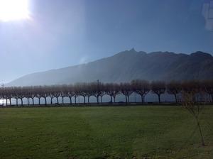 きれいな湖畔風景
