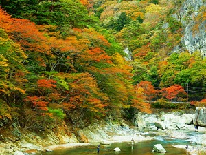 天狗岩周辺の紅葉
