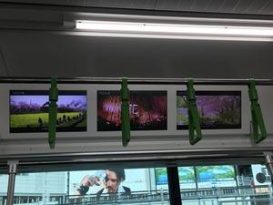 本物の出会い栃木列車