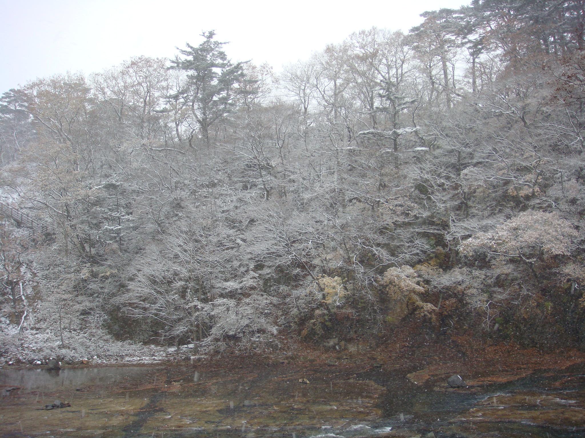 3日前、11/22の雪景色