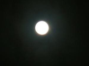 十六夜の月4