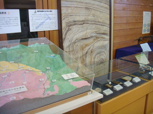 塩原化石園の化石も