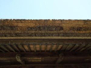 美しいかやぶき屋根