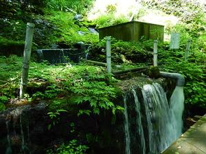 水管理をしている場所が何箇所か