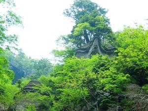 奇岩(鶴岩)