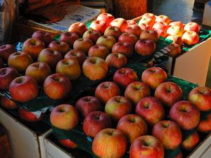 矢板のりんご