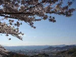 満開の桜と福島の山並み