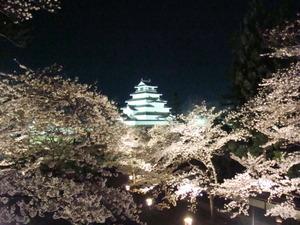 会津鶴ヶ城の夜桜