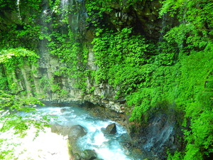 雄飛の滝周辺