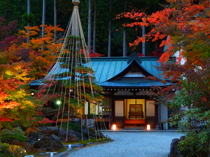 日光市清滝星野家の日本庭園