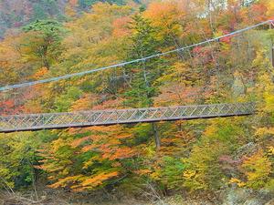 七つ岩つり橋