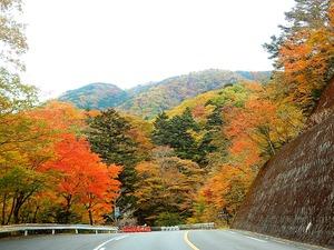 大正浪漫街道の紅葉