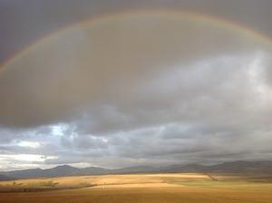 地平線にかかる大きな虹