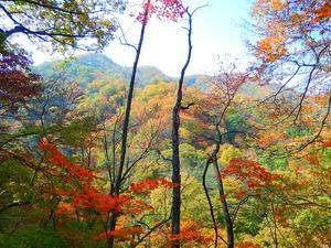 赤川渓谷遊歩道2015.10.20