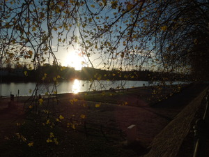 川の風景が美しいです
