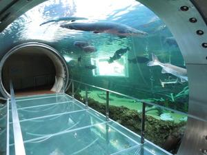 水のトンネル