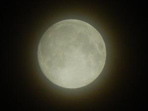 朧月の十五夜