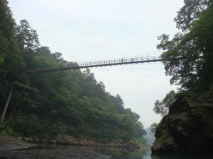 下から見上げる回顧のつり橋