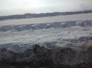 一面の雪の下に