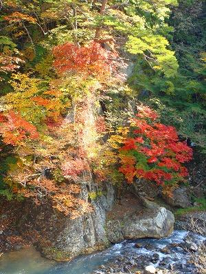 鹿股川の紅葉その3
