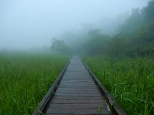 雨の塩原大沼