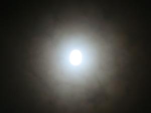 十六夜の月3
