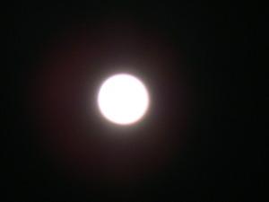 十六夜の月2