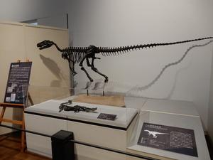 那須野が原博物館大恐竜展