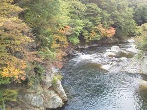 塩湧橋の紅葉