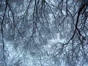 2015.2.18雪景色